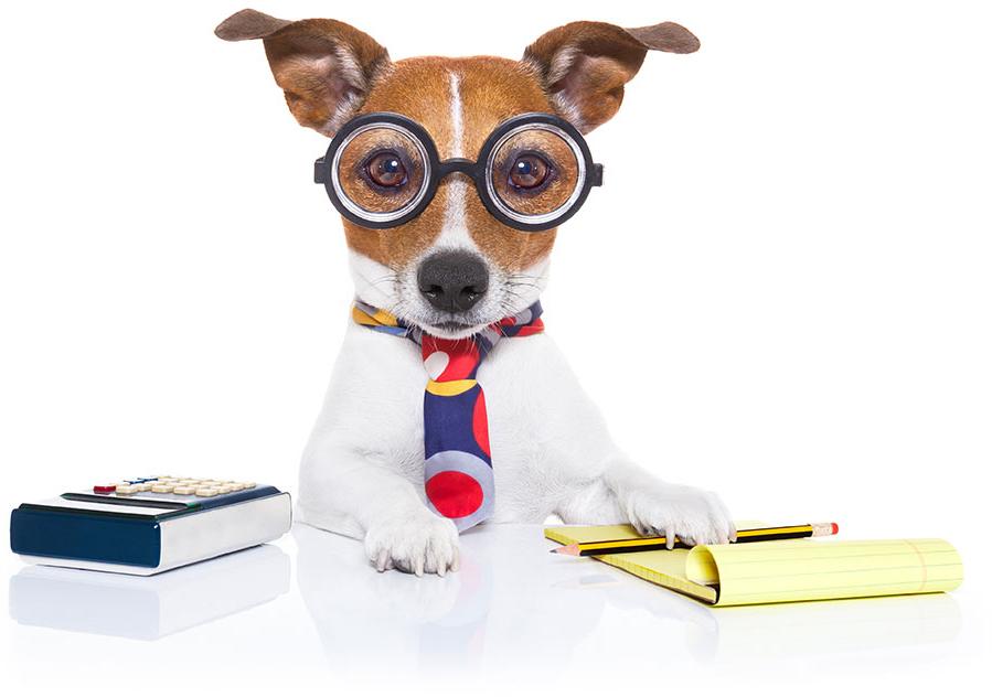 investment supervisor